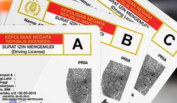 Cara Perpanjang SIM Lewat Aplikasi Sinar